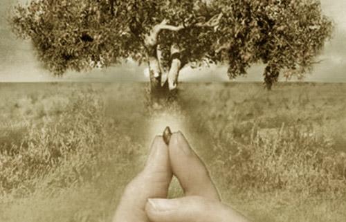 Αποτέλεσμα εικόνας για credinta ca un graunte